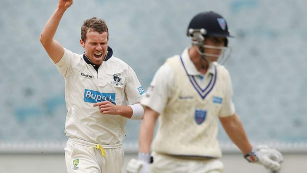In the frame: Peter Siddle will miss a Shield round.