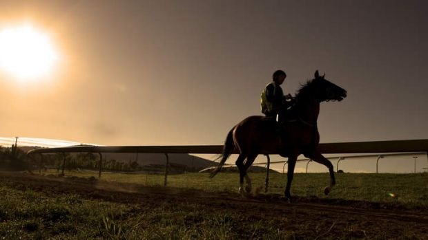 The revamped $18 million Sydney autumn carnival can be the catalyst to strengthen the capital?s premier race day and ...