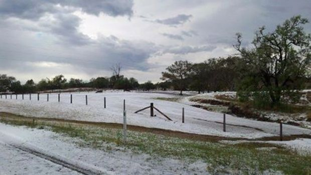 Hail turned the town of Ramsay, south of Toowoomba, into a winter wonderland on Wednesday afternoon. Photo: Nicole ...