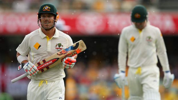 Golden summer: David Warner got among the runs and the money last year, as did several of Australia's top cricketers.