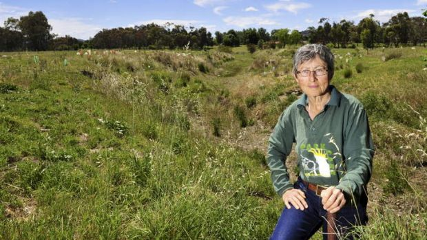 Historian and writer Jenny Horsfield stands near the old creek course behind the Tuggeranong Homestead.