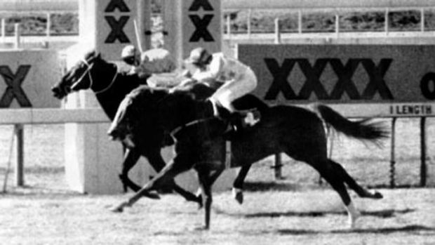Fine Cotton ring-in Bold Personality winning a race at Eagle Farm in 1984.