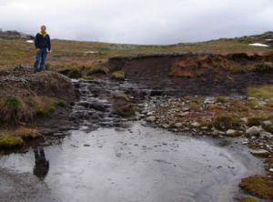 Protective detail … former Labor environment minister John Thwaites beside a damaged peat bed, before his government ...