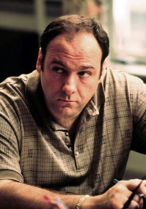 Good company: it's rare that hanging out with Tony Soprano is a recommended course of action for anyone but for Buddy it ...