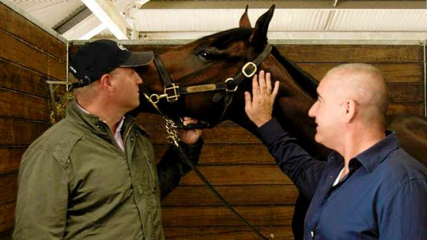 Trainer Danny O'Brien (left) and Bill Vlahos inspect the half-sister to Black Caviar that Mr Vlahos bought for $2.6 ...