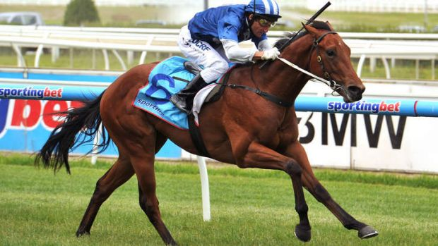 Nordic Empire has been cleared to continue racing.