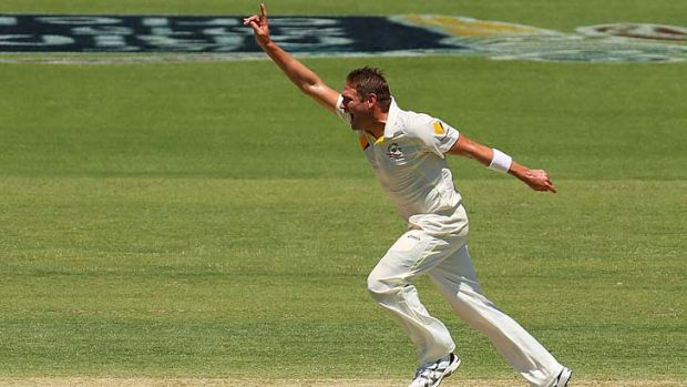 Ryan Harris celebrates the wicket of Ian Bell.