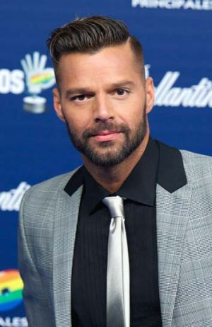 Plans for a 'great formal wedding': Ricky Martin.