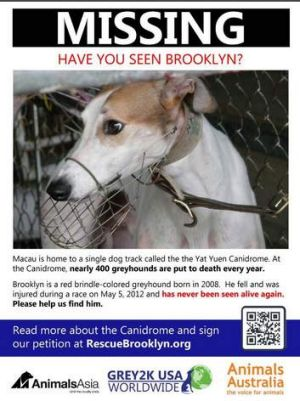 Brooklyn, who has not been seen since May last year.