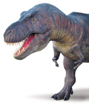 Reverse polarity: Did a change in the magnetic field happen at the time of the Tyrannosaurus Rex?
