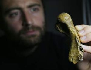 Palaeontologist Erich Fitzgerald with the seal flipper bone fossil.