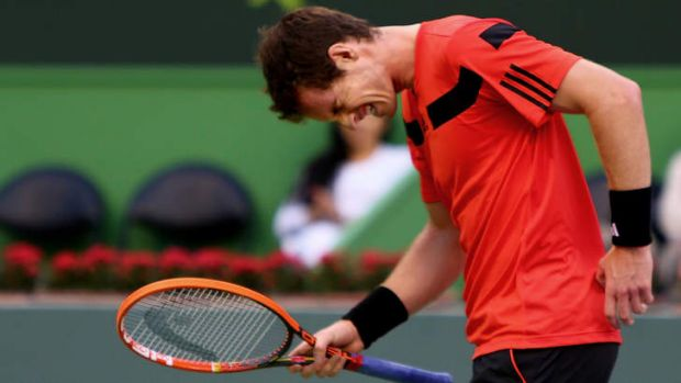 Back from injury: Britain's Andy Murray.