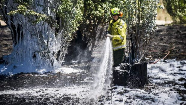 A firefighter hoses the ground in an attempt to prevent further fires from igniting.