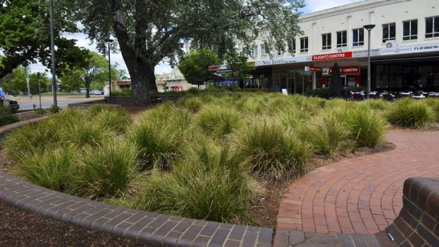 Kingston Traders and TAMS are battling over grass in Green Square at the Kingston Shops.