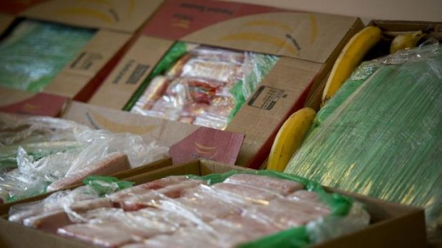 Unusual delivery: Seized cocaine in crates of imported bananas at the Federal Police Headquarters in Berlin.