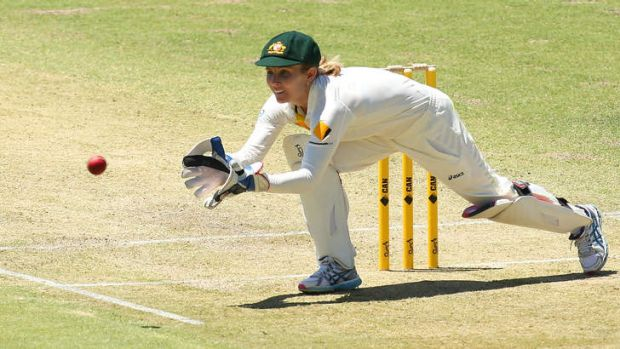 Jodie Fields in action at the WACA last week.