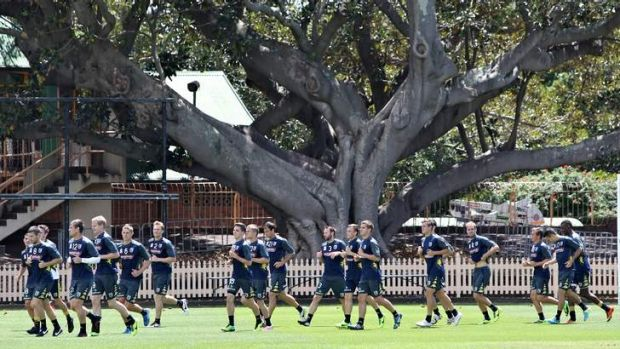 Squad strengthening: Central Coast Mariners training at North Sydney Oval last month.