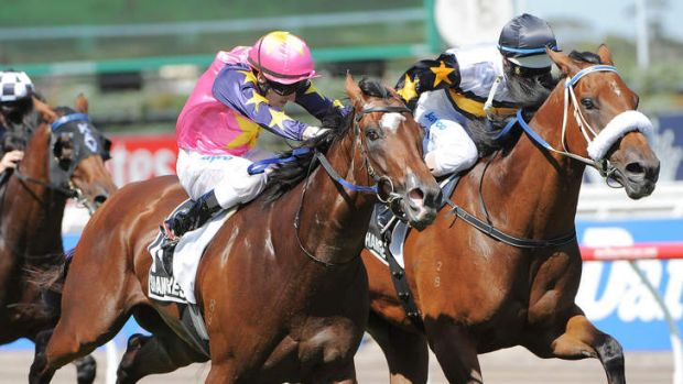 Moment of Change, inside, is favourite for the Australia Stakes at Moonee Valley on Friday night.