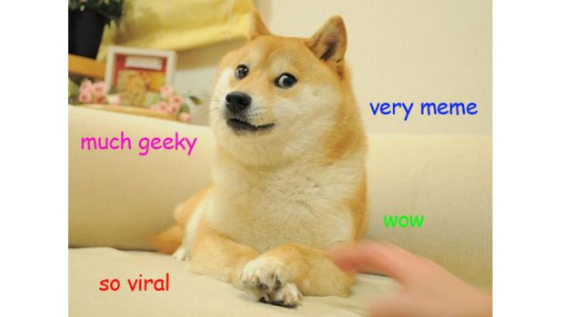 Viral content: An example of the doge meme.