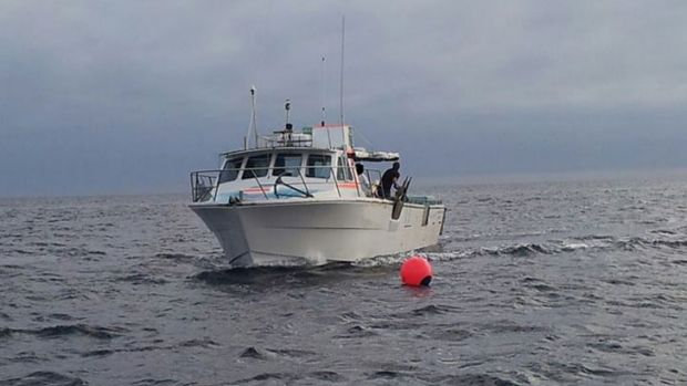 The fisherman boat near one of WA's controversial new drumlines.