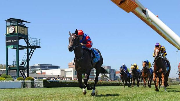 Impressive: Jockey Vlad Duric was full of praise for Nayeli after a strong win in the Chairman's Stakes at Caulfield.