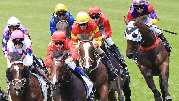On the rise: Unequivocal, left, is set for bigger races.
