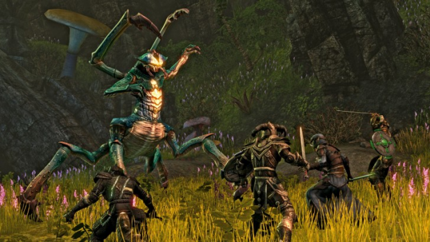 Elders Scrolls Online, and massively multiplayer take on Oblivion and Skyrim, may be the first major game that will not ...