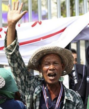 A Thai farmer protests against the Government's rice subsidy scheme.