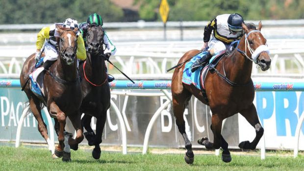 Well clear: Luke Nolen riding Moment of Change defeats Damien Oliver riding Eurozone and Craig Williams riding Shamus Award.