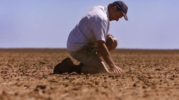 The El Nino effect: The drying trend has spread throughout inland Queensland, New South Wales and Victoria, making life ...