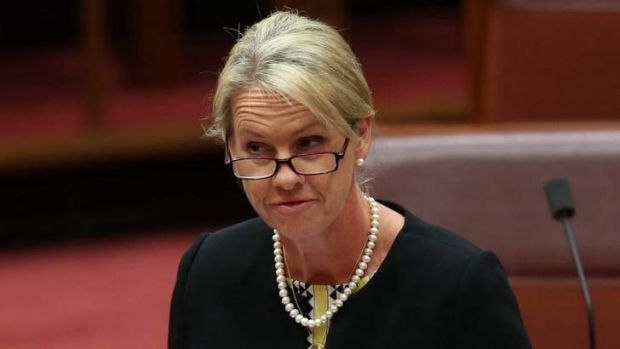 Under fire: Fiona Nash during question time.
