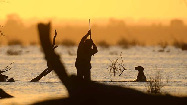 First hunt by licensed amateurs in a NSW national park set to take place.