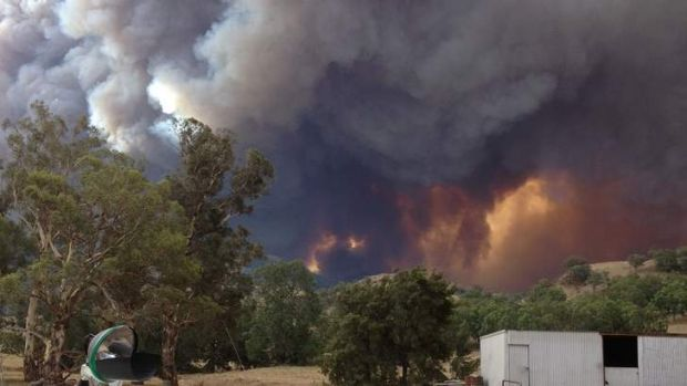 The fire in Coonabarabran last year.