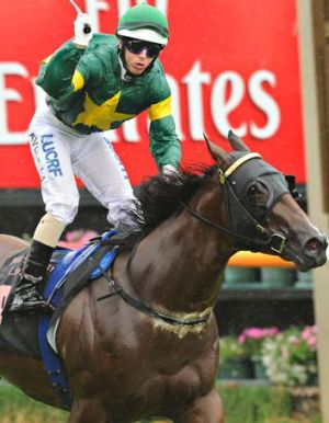 Riding high: Brenton Avdulla salutes his win on Snitzerland in the Black Caviar Lightning at Flemington on Saturday.
