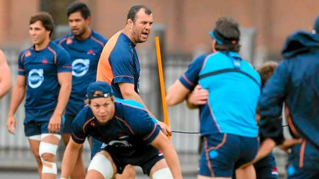 It's time: The Waratahs and coach Michael Cheika are primed for a big year - hopefully.