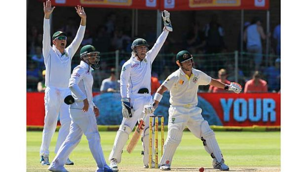 Australian opener David Warner is trapped lbw by J.P. Duminy (not in pic) during the second session of play.
