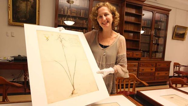 Yes or no? Curator Louise Anemaat with a drawing of a purple donkey orchid, one of the pictures caught up in the artist ...