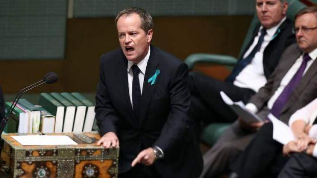 No monopoly on patriotism: Opposition Leader Bill Shorten defends Senator Stephen Conroy.