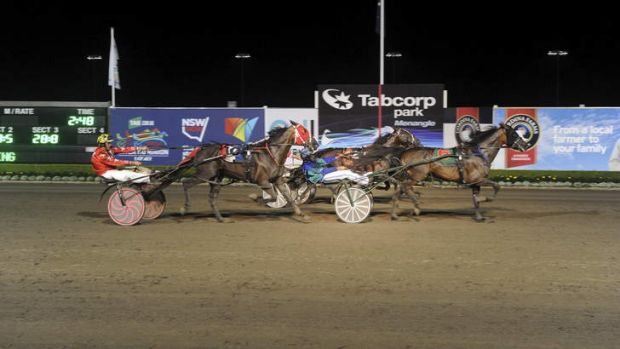 Family business: Todd McCarthy drives InterDominion outsider Seel N Print to a win at Menangle.