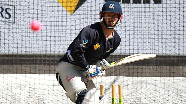 In the pink: Matthew Wade faces up to the pink ball at training.