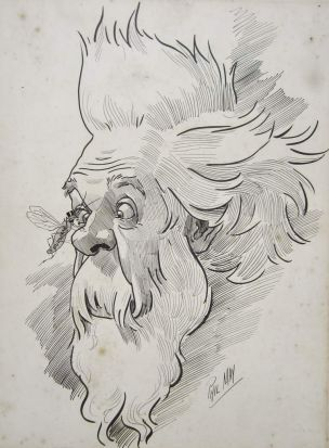 """""""That political insect the O'Sullivan"""" Illustration by Phil May, 1886 .JPG"""