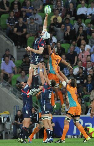 Class above: The Rebels outclassed the Cheetahs in Melbourne.