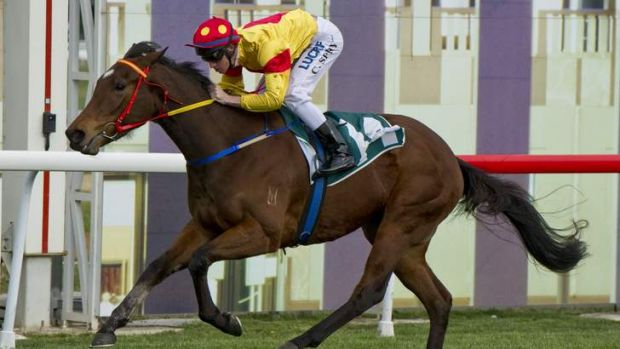 Just a Blur wins in Canberra in September. Barbara Jospeh's filly will chase the Canberra Guineas on Sunday.