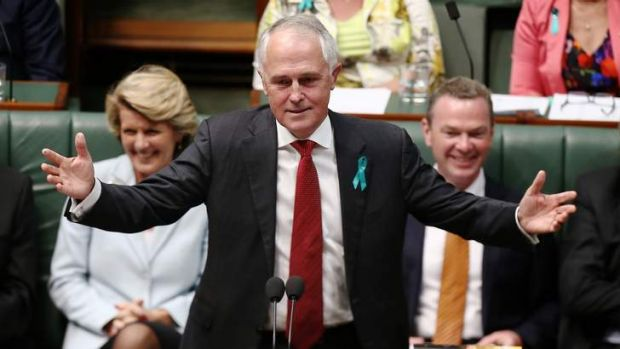 Federal Communications Minister Malcolm Turnbull in Parliament.