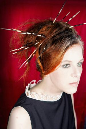 Venue let her down: Neko Case.