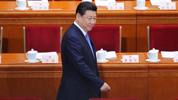 Chinese President Xi Jinping has called for more attention to factors such as the environment.