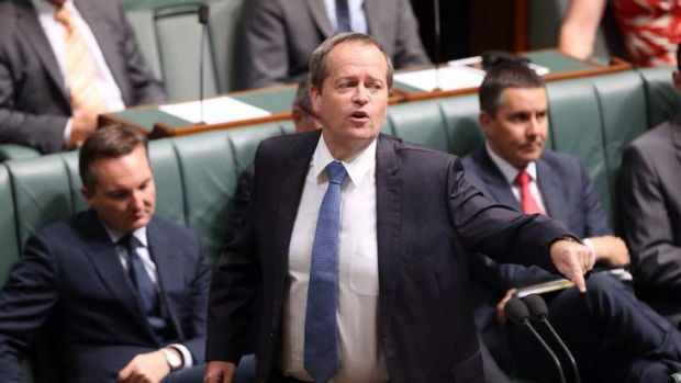 Opposition Leader Bill Shorten speaks against the Qantas Sale Amendment Bill. Photo: Andrew Meares