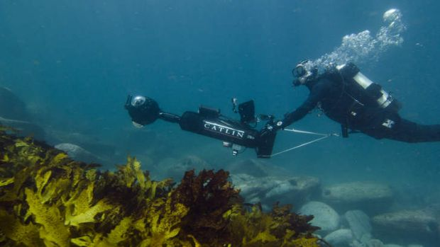 The Catlin Seaview Survey 360 degree underwater camera system in action off the Sydney coastline.