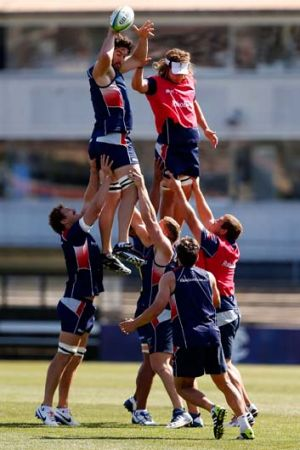 On a high: The Melbourne Rebels at a training session at Visy Park on Thursday.