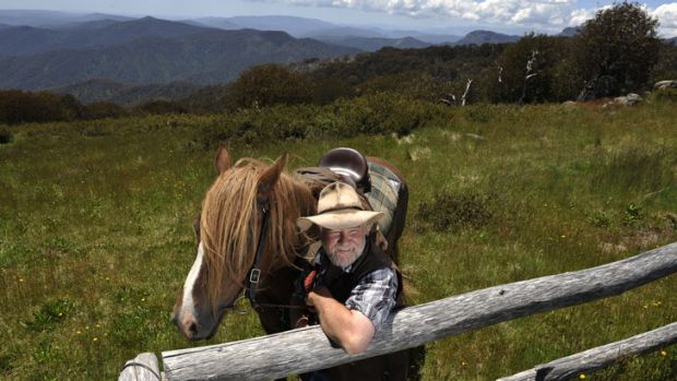On a high: Mountain Cattlemen's Association of Victoria president Charlie Lovick is thrilled cattle grazing is going ahead.